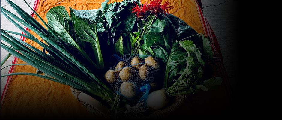 How to feed more people in a healthful and sustainable way?