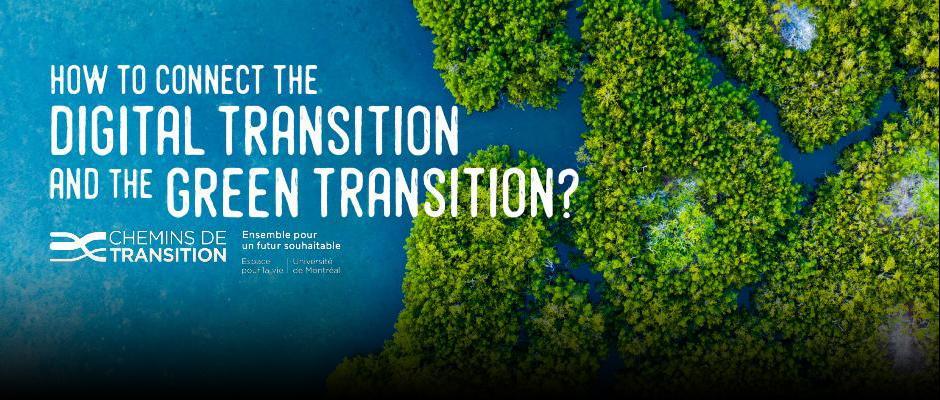 Carrousel - Transition Pathways