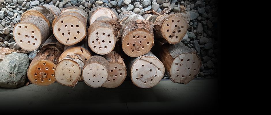 Discover pollinator nesting boxes, a boon for your garden!