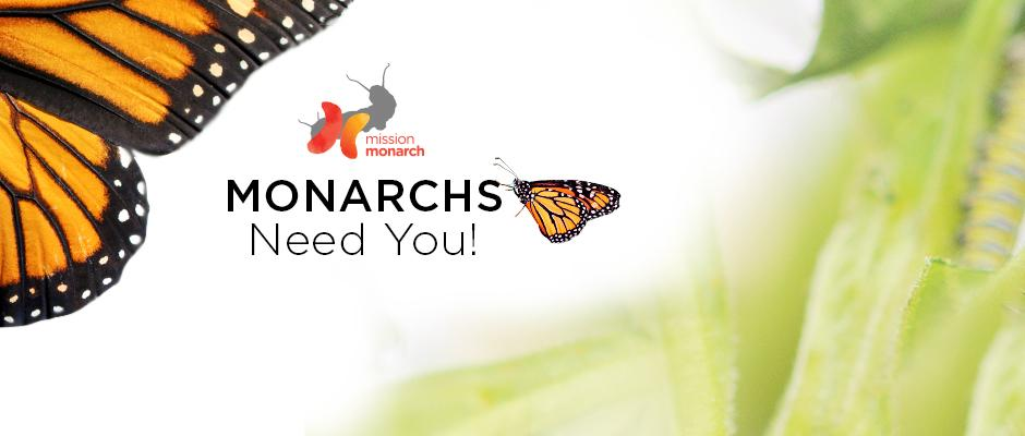 Mission Monarch - bandeau