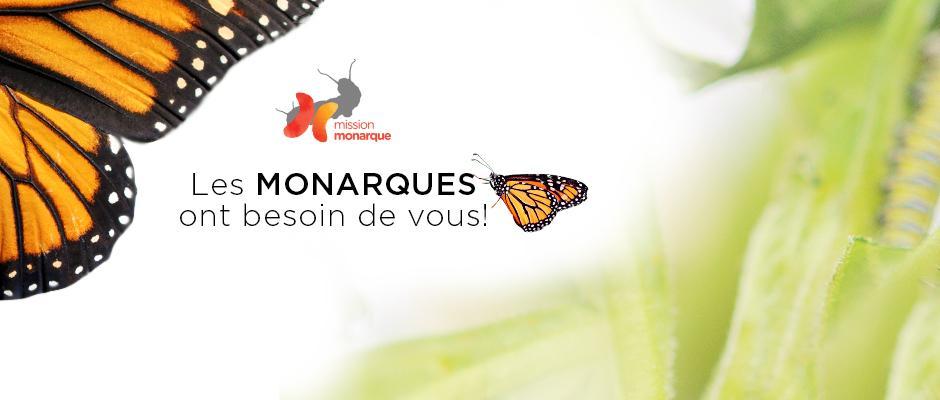 Mission monarque - bandeau
