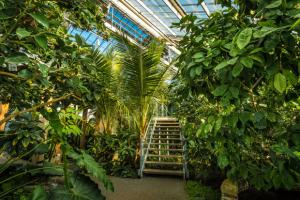 Explore the greenhouses