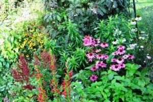 Galerie des jardinautes