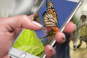 Application mobile Espace pour la vie