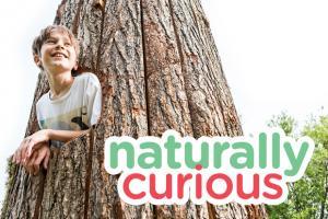 Naturally Curious