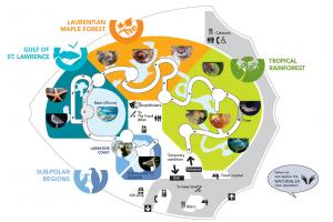 Map of the ecosystems