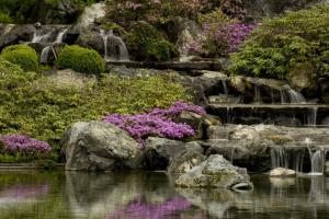 Cascade in the Japanese Garden.