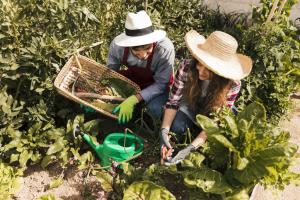 At-home gardeners