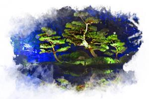 Aquarelle - Jardins de lumière 2014