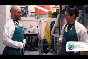 Examen médical d'un esturgeon noir au Biodôme de Montréal