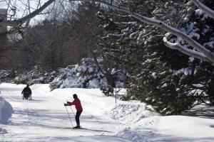 Ski de fond au Jardin botanique