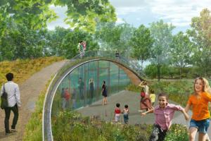 Pathway to Phytotechnologies - Filtering marshes and green roof
