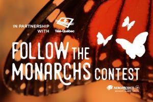 Follow the Monarchs! Contest