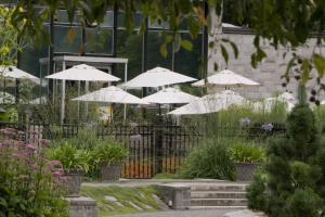 Terrasse du restaurant du Jardin botanique vue du Jardin des vivaces.
