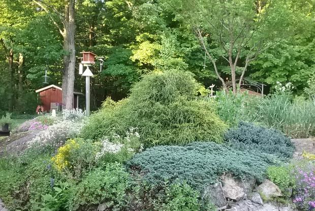 Programme mon jardin espace pour la vie espace pour la vie for Programme jardin