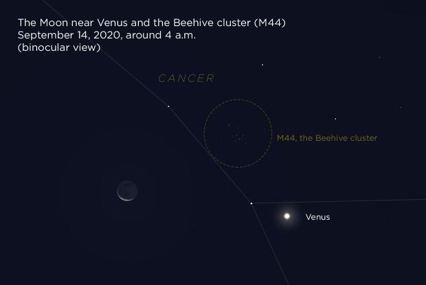 20200914 Moon Venus M44