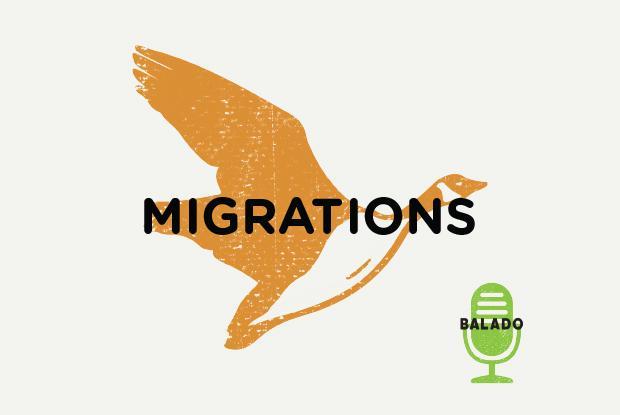 Balado Migrations d'oiseaux - Espace pour la vie