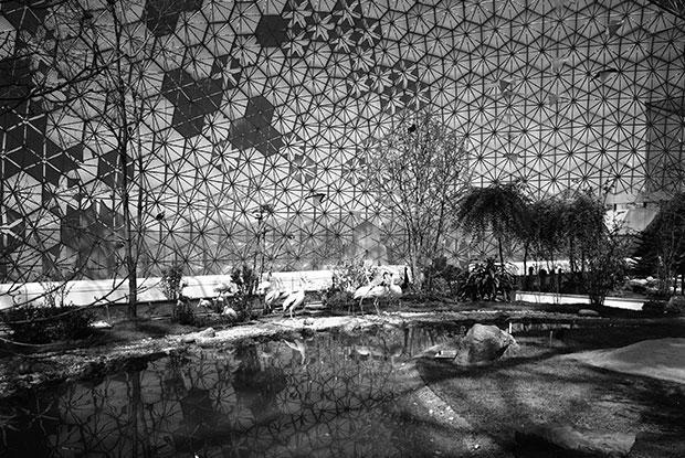 Salles d'exposition de la Biosphère en mai 1968