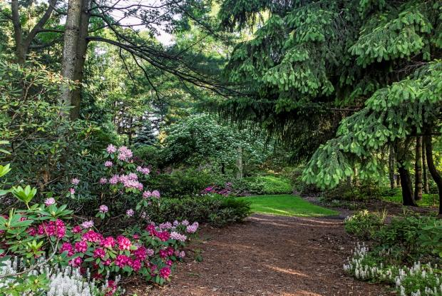 Jardin Leslie-Hancock - vue générale