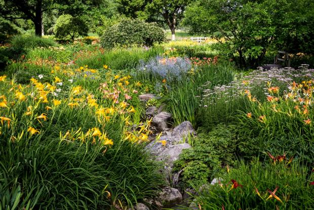 General view of the Flowery Brook