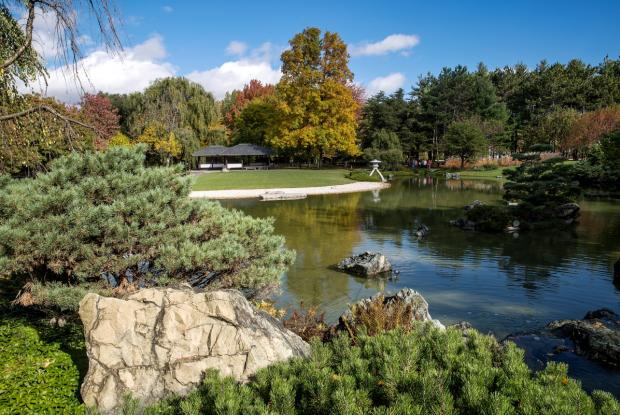 General view of the Japanese garden in autumn