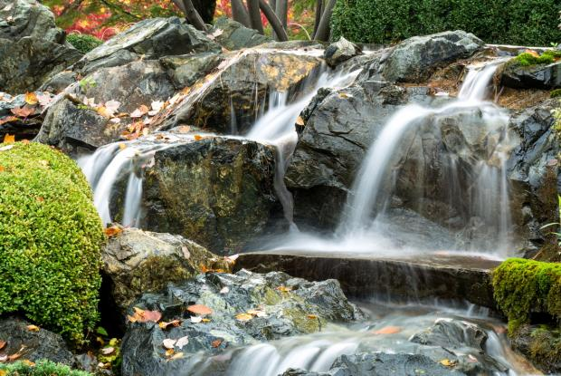 A cascade of water in the Japanese garden