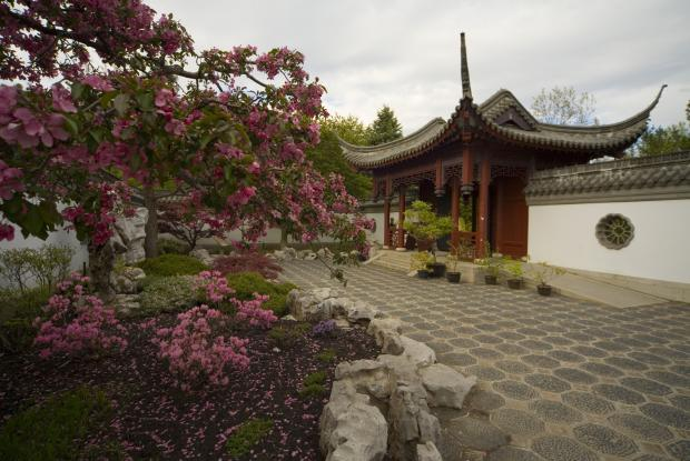 Chinese Garden Space for life