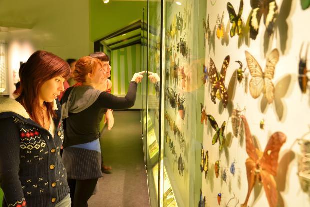 Visiteurs à l'Insectarium de Montréal