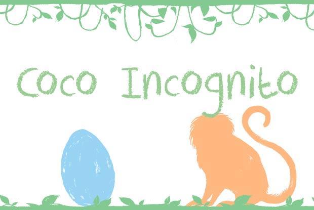 Coco Incognito