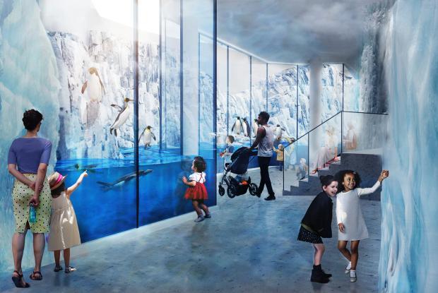 Migration du Biodôme - mur de glace