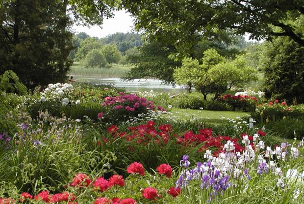 Expertise horticole du jardin botanique espace pour la vie for Botanique jardin montreal