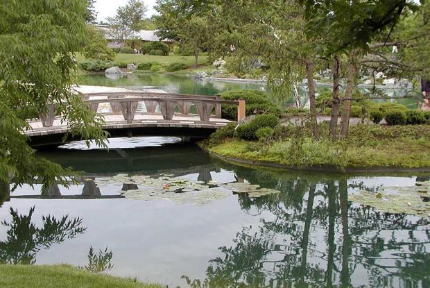l ments du jardin japonais espace pour la vie. Black Bedroom Furniture Sets. Home Design Ideas