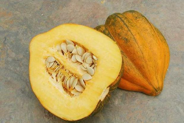 Cucurbita pepo 'Table King'