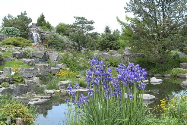 Agencement de la rocaille espace pour la vie - Agencement jardin ...