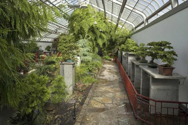 Garden of Weedlessness
