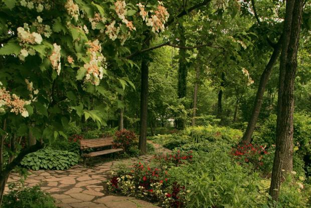 Jardin du sous bois espace pour la vie for Au coin du jardin