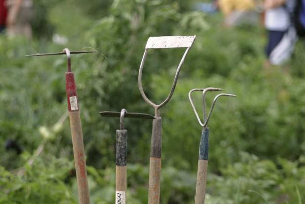 A collection of gardening tools at the Youth Gardens.
