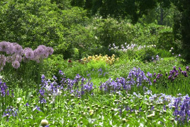 Pesticide-free gardening