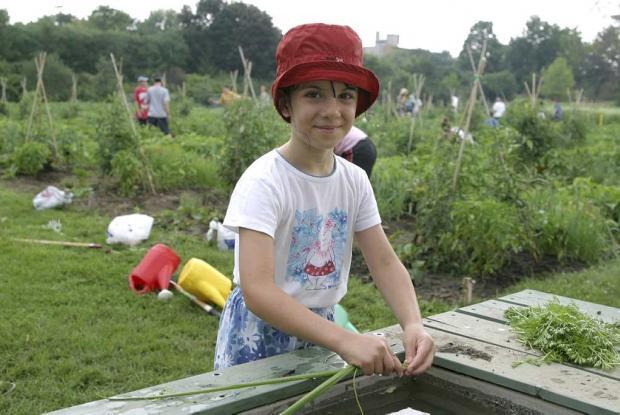 Jardins-jeunes