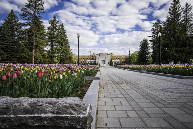 Jardins d'accueil 2015