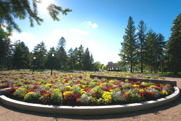 Jardins d'accueil - Vue générale