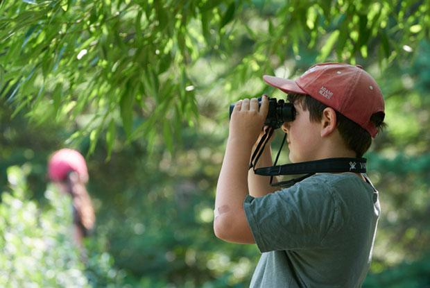 A boy looks at nature through binoculars