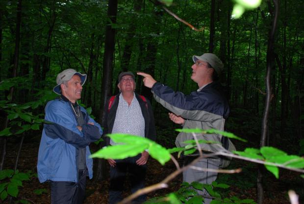 Excursion à la réserve écologique du Boisé-des-Muir, Huntingdon. De gauche à droite: Michel Labrecque, le botaniste français Francis Hallé et Jacques Brisson de l'IRBV.