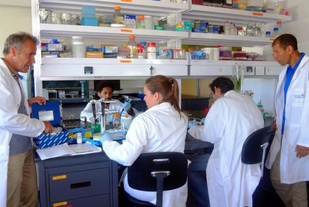 Michel Labrecque in discussion with students in the laboratory. On the far right, Professor Mohamed Hijri of IRBV.