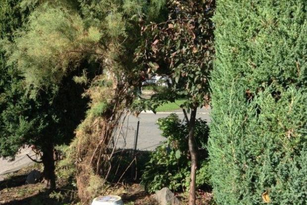 Jardin italien space for life for Jardin italien