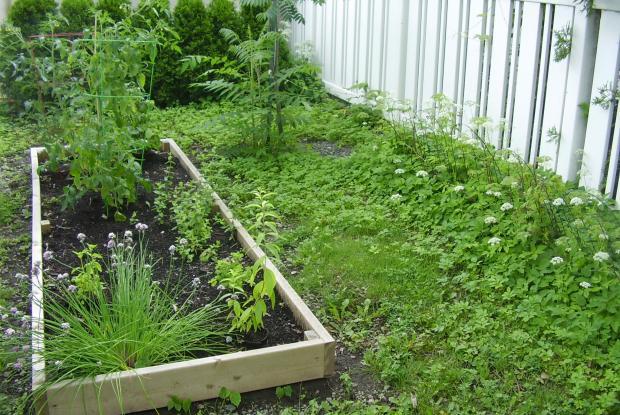 le joli petit jardin pour la biodiversit espace pour la vie. Black Bedroom Furniture Sets. Home Design Ideas
