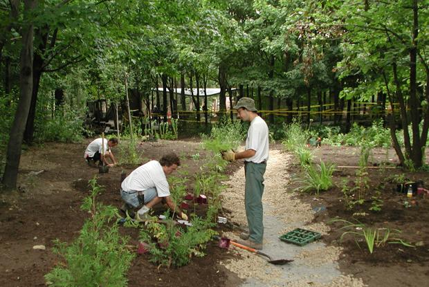 Construction of the First Nations Garden