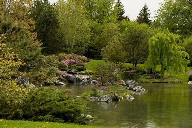 Water, an important element in a Japanese garden