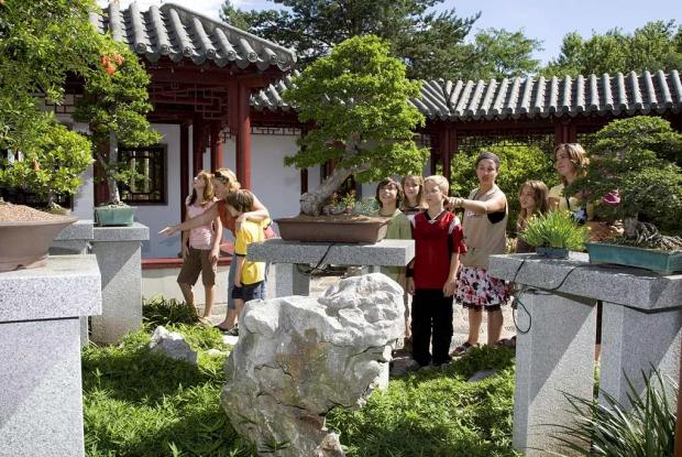 Montreal Chinese Garden Society