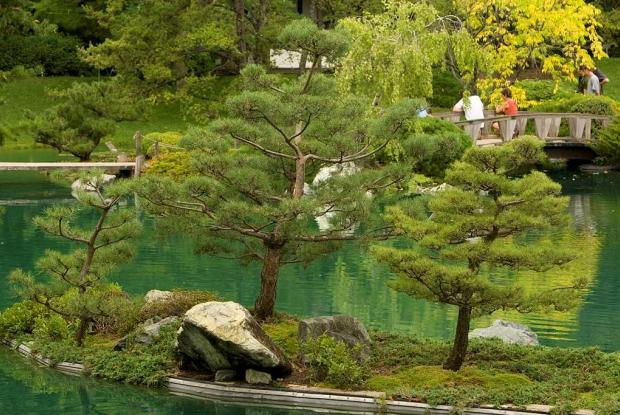 Photo Jardin Botanique De Montreal Michel Tremblay The Japanese Maples In This Garden
